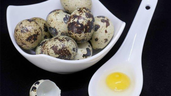 Manfaat Telur Puyuh bagi Kesehatan, Cegah Penyakit Kronis hingga Kontrol Tekanan Darah